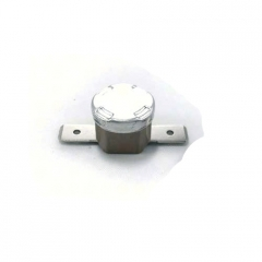 Thermostat 115C/10,0A 1NT01L - AEG CaFamosa