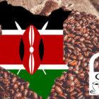 Kenia – Die Teenation, die den besten Kaffee der Welt anbaut