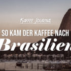 So kam der Kaffee nach Brasilien